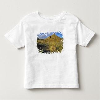 Badlands formations at Dinosaur Provincial Park Toddler T-shirt