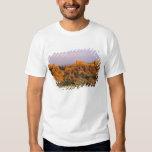 Badlands National Park in South Dakota T-Shirt