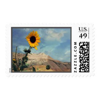 Badlands South Dakota Postage