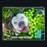 "BADRAP Rescue Barn 2019 Calendar<br><div class=""desc"">Twelve months of rescued dogs from BADRAP&#39;s adoption program.</div>"