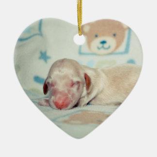 Bae Newborn-Lovebugdoxies puppy keepsake Ceramic Ornament