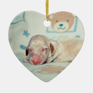 Bae Newborn-Lovebugdoxies puppy keepsake Double-Sided Heart Ceramic Christmas Ornament