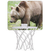 baer 02 mini basketball hoops