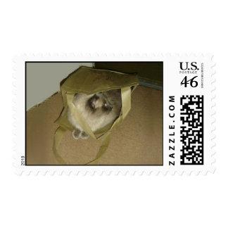 Bag Lady Cat Postage