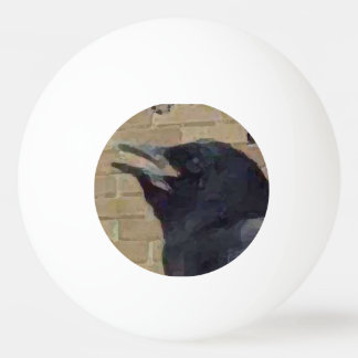 Bagheera el cuervo pelota de ping pong