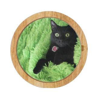 Bagheera el tablero del queso del gato negro