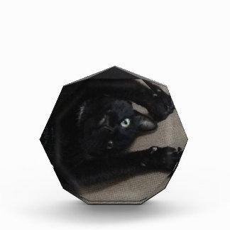 Bagheera the Black Cat Acrylic Award