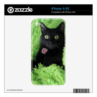Bagheera the Black Cat Cell Phone Skin Decals For The iPhone 4S