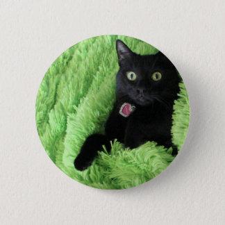 Bagheera the Black Cat Pinback Button