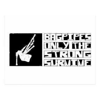 Bagpipes Survive Postcard