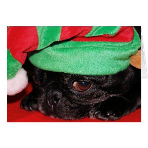 bah hum pug holiday greeting card