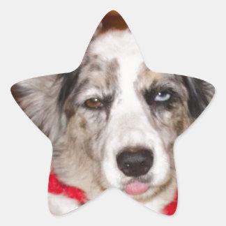 Bah Humbug Corgi!!! Star Sticker