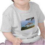 Bahama Beach Paradise Shirts