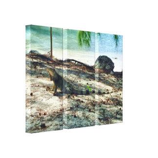 Bahama Iguana Wrapped Canvas