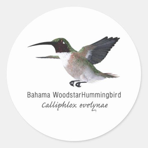 Bahama Woodstar Hummingbird with Name Classic Round Sticker