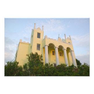 BAHAMAS, Abacos, gran isla de Ábaco, pantano Fotografía