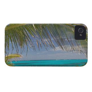 BAHAMAS, Abacos, isletas leales, isleta de O'War Case-Mate iPhone 4 Coberturas