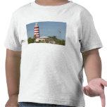 BAHAMAS, Abacos, isletas leales, isleta del codo, Camisetas