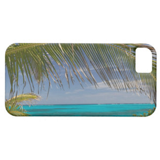 BAHAMAS, Abacos, Loyalist Cays, Man O'War Cay: iPhone SE/5/5s Case