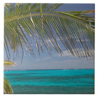 BAHAMAS, Abacos, Loyalist Cays, Man O'War Cay: Large Square Tile