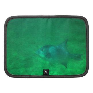 Bahamas Fish 2 Organizer