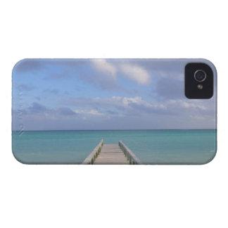 BAHAMAS, Grand Bahama Island, Eastern Side: iPhone 4 Covers