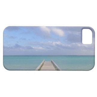 BAHAMAS, Grand Bahama Island, Eastern Side: iPhone 5 Covers