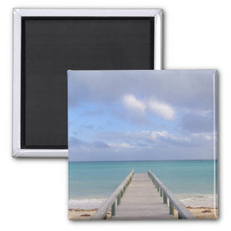BAHAMAS, Grand Bahama Island, Eastern Side: Magnet