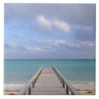 BAHAMAS, Grand Bahama Island, Eastern Side: Large Square Tile