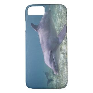 Bahamas, Grand Bahama Island, Freeport, Captive 2 iPhone 8/7 Case