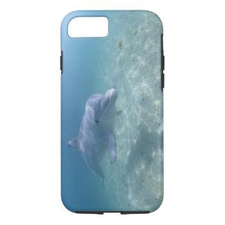 Bahamas, Grand Bahama Island, Freeport, Captive 3 iPhone 8/7 Case