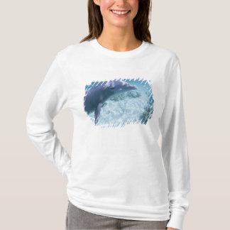 Bahamas, Grand Bahama Island, Freeport, Captive 4 T-Shirt