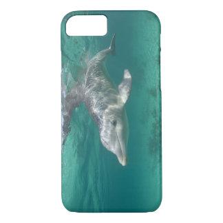 Bahamas, Grand Bahama Island, Freeport, Captive 5 iPhone 8/7 Case