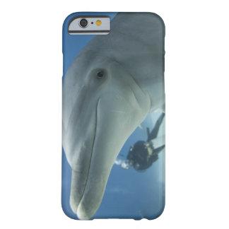 Bahamas, Grand Bahama Island, Freeport, Scuba 2 Barely There iPhone 6 Case