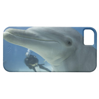Bahamas, Grand Bahama Island, Freeport, Scuba 2 iPhone SE/5/5s Case