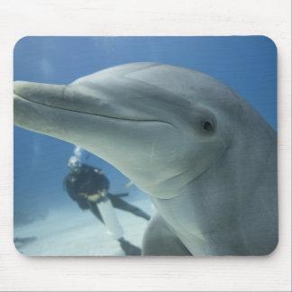 Bahamas, Grand Bahama Island, Freeport, Scuba 2 Mouse Pad