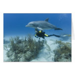 Bahamas, Grand Bahama Island, Freeport, Scuba Greeting Card