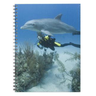 Bahamas, Grand Bahama Island, Freeport, Scuba Notebook