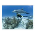 Bahamas, Grand Bahama Island, Freeport, Scuba Postcard