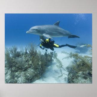 Bahamas, Grand Bahama Island, Freeport, Scuba Print