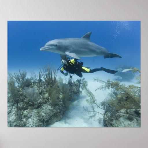 Bahamas, Grand Bahama Island, Freeport, Scuba Poster