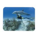 Bahamas, Grand Bahama Island, Freeport, Scuba Rectangular Photo Magnet
