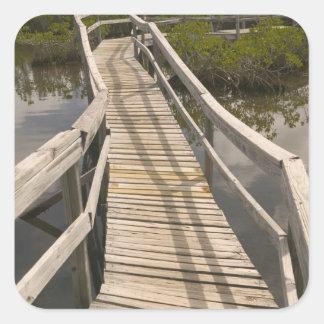 BAHAMAS isla de Bahama magnífica lado del este Pegatina Cuadradas Personalizada