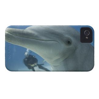 Bahamas, isla de Bahama magnífica, puerto franco, Case-Mate iPhone 4 Funda