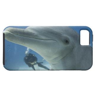 Bahamas, isla de Bahama magnífica, puerto franco,  iPhone 5 Case-Mate Carcasas
