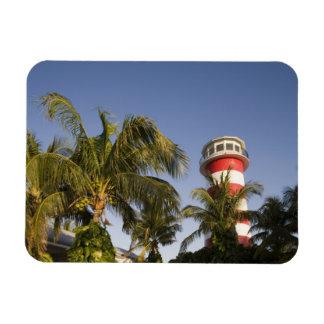 Bahamas, isla de Bahama magnífica, puerto franco,  Imán Rectangular