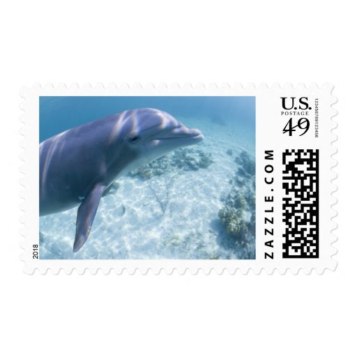 Bahamas, isla de Bahama magnífica, puerto franco, Sellos