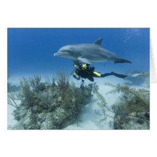 Bahamas, isla de Bahama magnífica, puerto franco,  Tarjetas