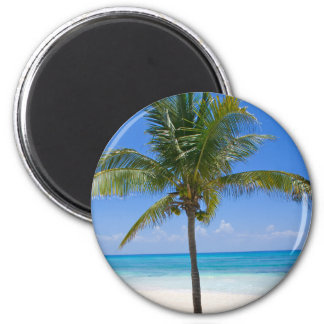 Bahamas Palm Fridge Magnet