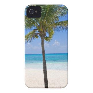 Bahamas Palm Tree iPhone 4 Case-Mate Case